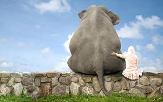 http://weloversize.com/queridodiario/empatizate/